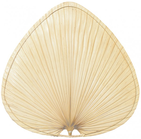 Flügelsatz Palme natur 112